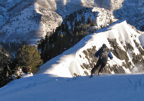 B-Rad Barlage skiing along the upper Argenta ridgeline.  The headwall is the forested cleft in the background.