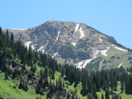 Baldy Chute – August 10th.  ??!!