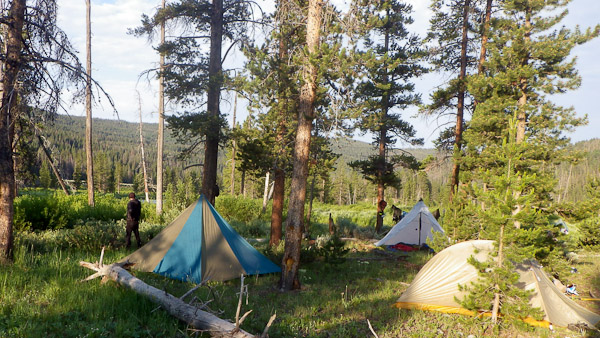 All of the campsites on this trip were 5-star.
