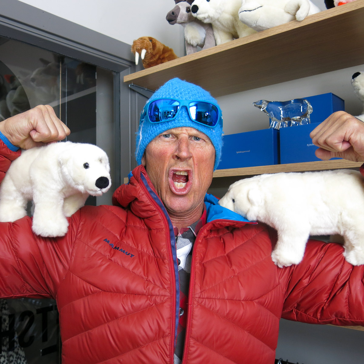 Polar bears?  Bring'em on.