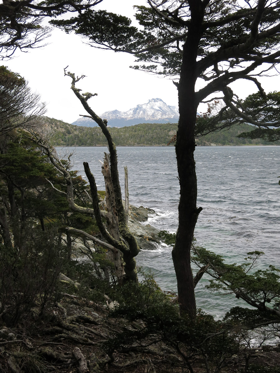 Tierra del Fuego National Park.